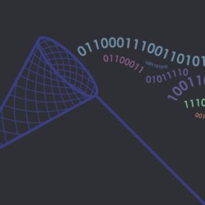 Net catching data